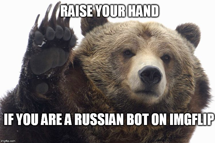 You Know Who You Are | RAISE YOUR HAND IF YOU ARE A RUSSIAN BOT ON IMGFLIP | image tagged in bear raise hand | made w/ Imgflip meme maker