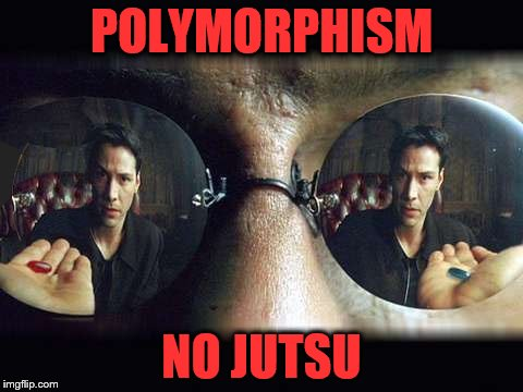 POLYMORPHISM; NO JUTSU | image tagged in morphius | made w/ Imgflip meme maker