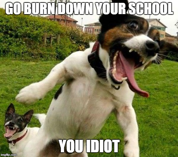 Angry Dogs | GO BURN DOWN YOUR SCHOOL YOU IDIOT | image tagged in angry dogs | made w/ Imgflip meme maker
