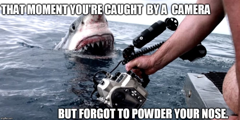candid camera  shark   | THAT MOMENT YOU'RE CAUGHT  BY A  CAMERA BUT FORGOT TO POWDER YOUR NOSE. | image tagged in great white shark,camera,nose | made w/ Imgflip meme maker