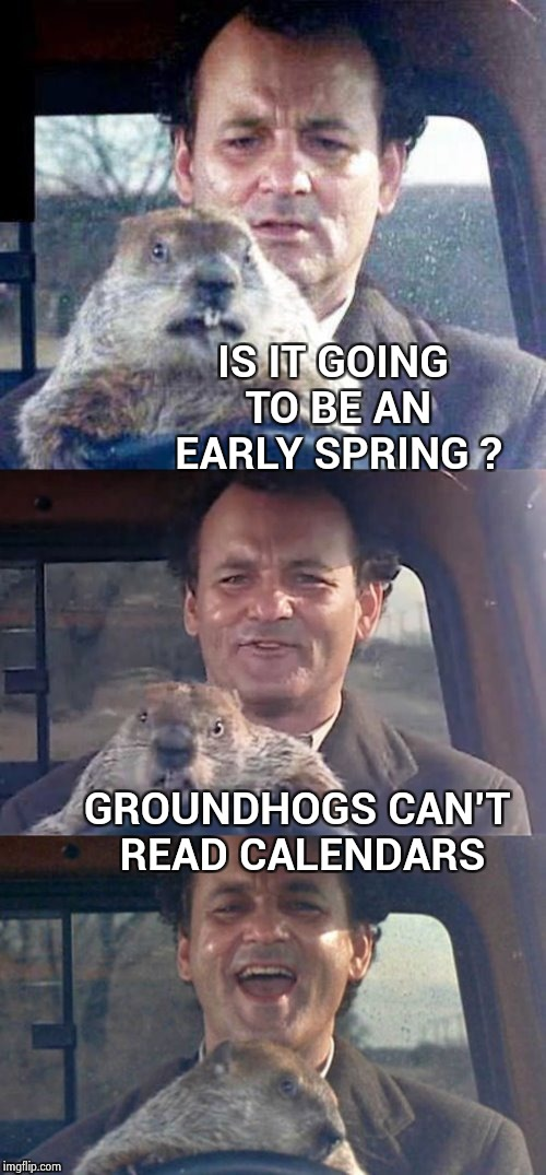 It's Grounhog Day ! | IS IT GOING TO BE AN EARLY SPRING ? GROUNDHOGS CAN'T READ CALENDARS | image tagged in ground hog day madness,bill murray,movie,lol so funny | made w/ Imgflip meme maker