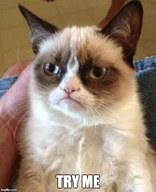 Grumpy Cat Meme | TRY ME | image tagged in memes,grumpy cat | made w/ Imgflip meme maker