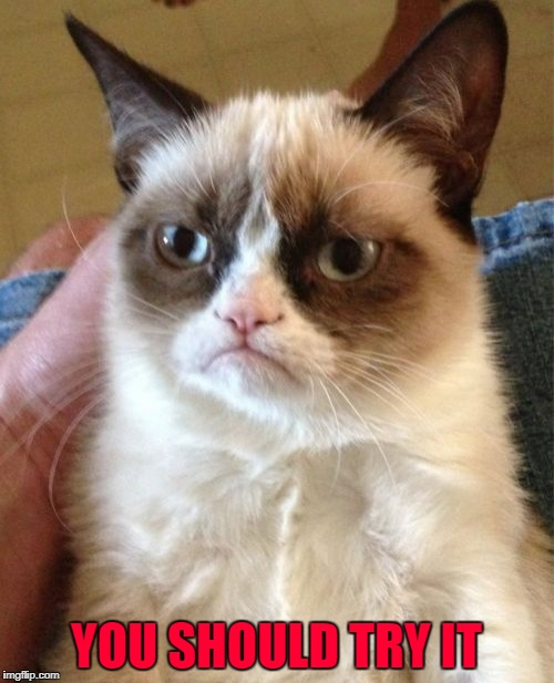 Grumpy Cat Meme | YOU SHOULD TRY IT | image tagged in memes,grumpy cat | made w/ Imgflip meme maker