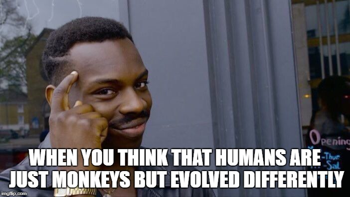 Roll Safe Think About It Meme | WHEN YOU THINK THAT HUMANS ARE JUST MONKEYS BUT EVOLVED DIFFERENTLY | image tagged in memes,roll safe think about it | made w/ Imgflip meme maker