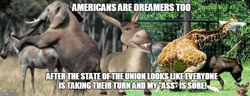 "Donkey give his response to the democrats   | AMERICANS ARE DREAMERS TOO AFTER THE STATE OF THE UNION LOOKS LIKE EVERYONE IS TAKING THEIR TURN AND MY ""ASS"" IS SORE! 