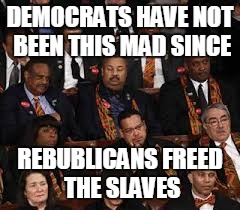 They really are mad | DEMOCRATS HAVE NOT BEEN THIS MAD SINCE REBUBLICANS FREED THE SLAVES | image tagged in state of the union,democrats,republicans | made w/ Imgflip meme maker