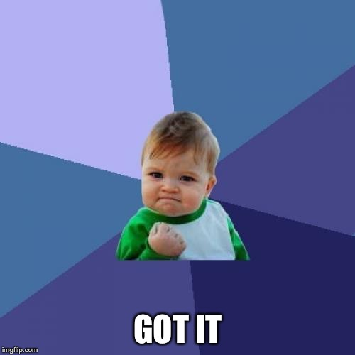 Success Kid Meme | GOT IT | image tagged in memes,success kid | made w/ Imgflip meme maker