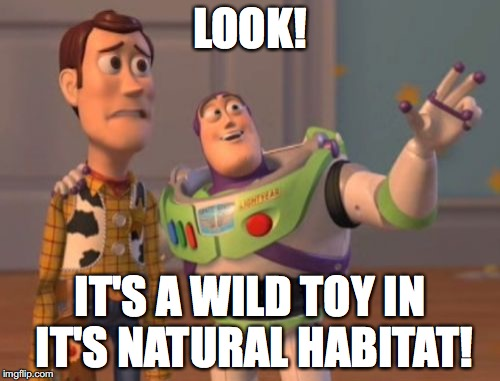X, X Everywhere Meme | LOOK! IT'S A WILD TOY IN IT'S NATURAL HABITAT! | image tagged in memes,x x everywhere | made w/ Imgflip meme maker