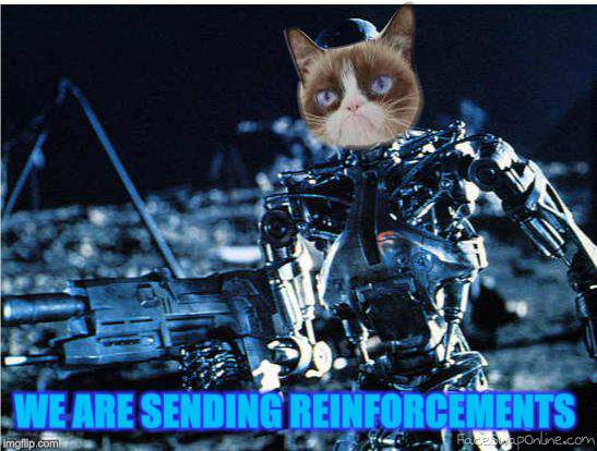 grump cat terminator | WE ARE SENDING REINFORCEMENTS | image tagged in grump cat terminator | made w/ Imgflip meme maker