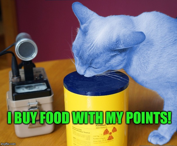 RayCat eating | I BUY FOOD WITH MY POINTS! | image tagged in raycat eating | made w/ Imgflip meme maker