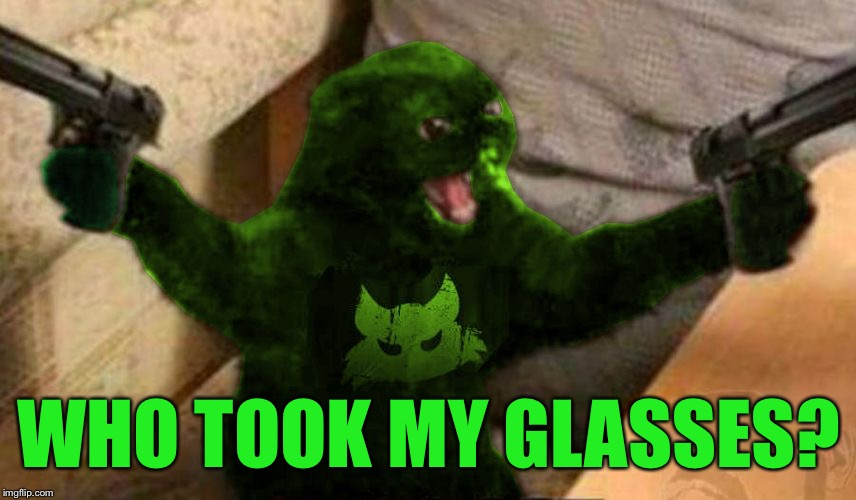 RayCat Angry | WHO TOOK MY GLASSES? | image tagged in raycat angry | made w/ Imgflip meme maker