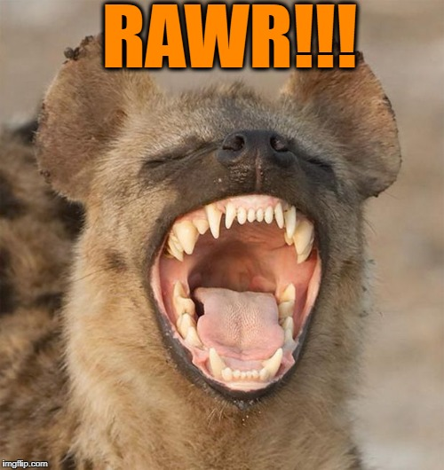 lol | RAWR!!! | image tagged in lol | made w/ Imgflip meme maker