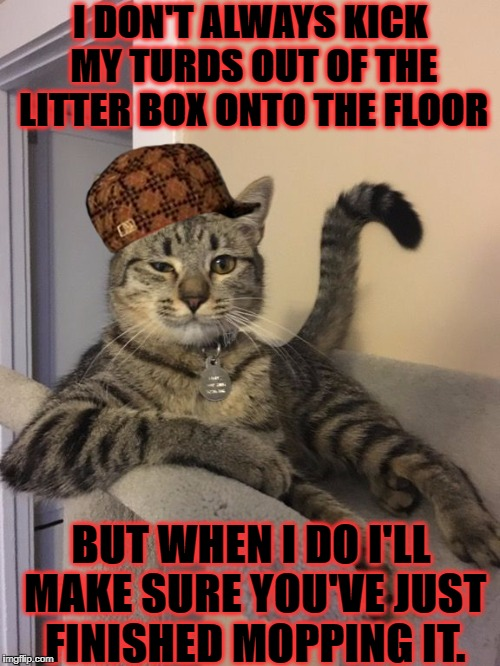 I DON'T ALWAYS KICK MY TURDS OUT OF THE LITTER BOX ONTO THE FLOOR BUT WHEN I DO I'LL MAKE SURE YOU'VE JUST FINISHED MOPPING IT. | image tagged in douche bag cat,scumbag | made w/ Imgflip meme maker