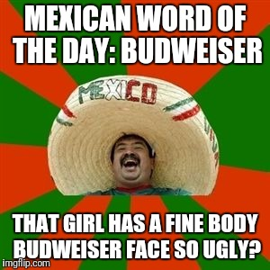 succesful mexican | MEXICAN WORD OF THE DAY: BUDWEISER THAT GIRL HAS A FINE BODY BUDWEISER FACE SO UGLY? | image tagged in succesful mexican,mexican word of the day | made w/ Imgflip meme maker