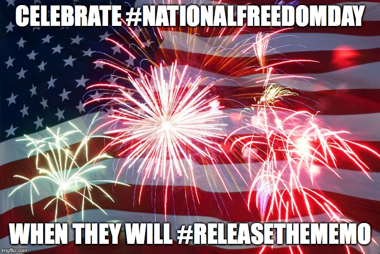 Flag Fireworks | CELEBRATE #NATIONALFREEDOMDAY WHEN THEY WILL #RELEASETHEMEMO | image tagged in flag fireworks | made w/ Imgflip meme maker