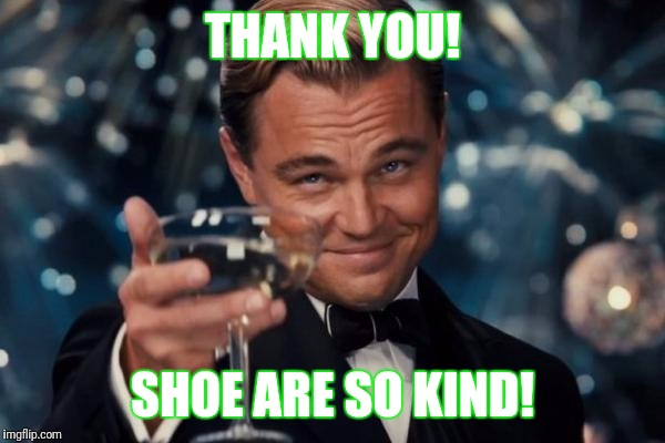 Leonardo Dicaprio Cheers Meme | THANK YOU! SHOE ARE SO KIND! | image tagged in memes,leonardo dicaprio cheers | made w/ Imgflip meme maker
