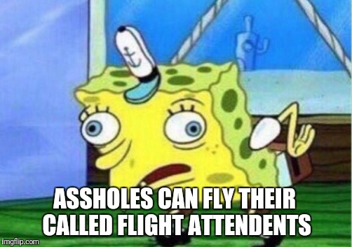 Mocking Spongebob Meme | ASSHOLES CAN FLY THEIR CALLED FLIGHT ATTENDENTS | image tagged in memes,mocking spongebob | made w/ Imgflip meme maker