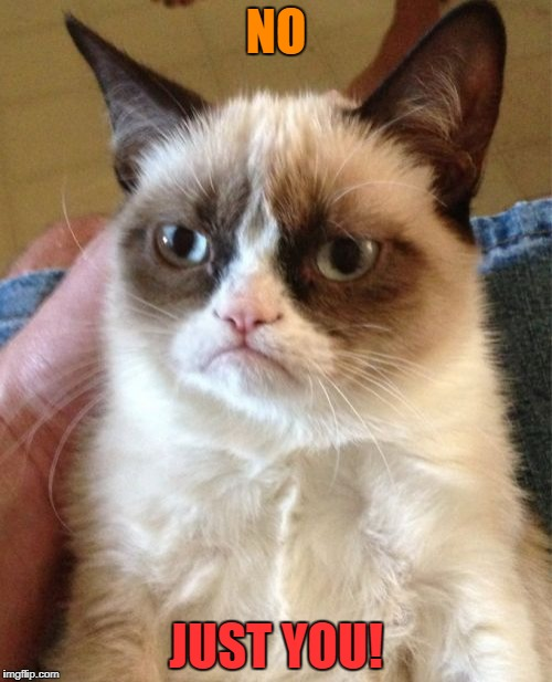 Grumpy Cat Meme | NO JUST YOU! | image tagged in memes,grumpy cat | made w/ Imgflip meme maker