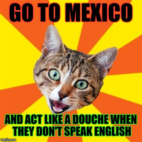 Bad Advice Cat |  GO TO MEXICO; AND ACT LIKE A DOUCHE WHEN THEY DON'T SPEAK ENGLISH | image tagged in memes,bad advice cat | made w/ Imgflip meme maker