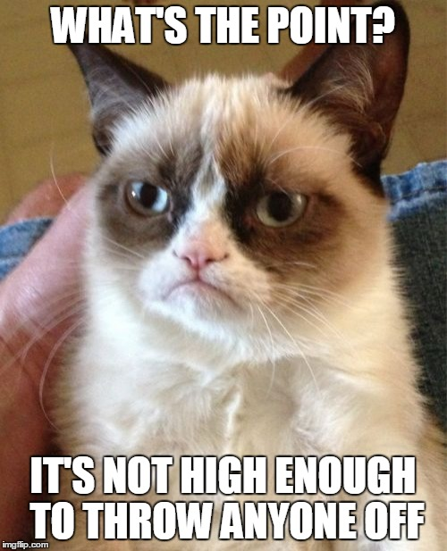 Grumpy Cat Meme | WHAT'S THE POINT? IT'S NOT HIGH ENOUGH TO THROW ANYONE OFF | image tagged in memes,grumpy cat | made w/ Imgflip meme maker