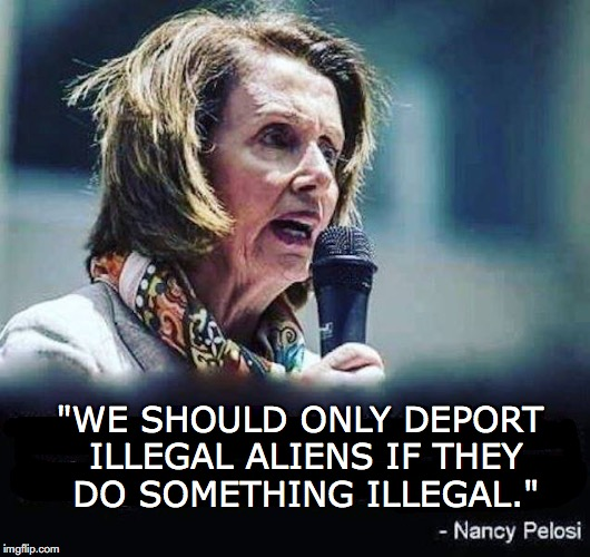 "You gotta admire her logic | ""WE SHOULD ONLY DEPORT ILLEGAL ALIENS IF THEY DO SOMETHING ILLEGAL."" 
