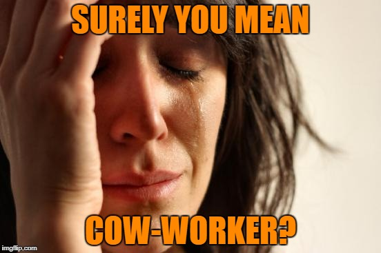 First World Problems Meme | SURELY YOU MEAN COW-WORKER? | image tagged in memes,first world problems | made w/ Imgflip meme maker