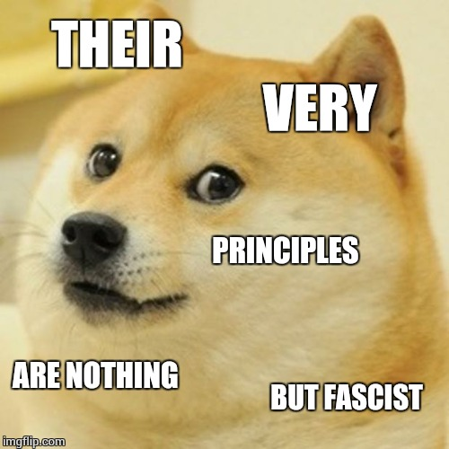 Doge Meme | THEIR VERY PRINCIPLES ARE NOTHING BUT FASCIST | image tagged in memes,doge | made w/ Imgflip meme maker