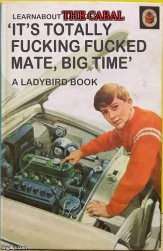 THE CABAL | image tagged in ladybird book cabal | made w/ Imgflip meme maker