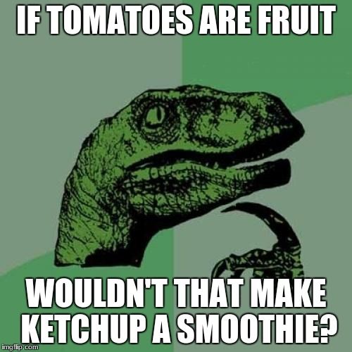 Philosoraptor | IF TOMATOES ARE FRUIT WOULDN'T THAT MAKE KETCHUP A SMOOTHIE? | image tagged in memes,philosoraptor | made w/ Imgflip meme maker