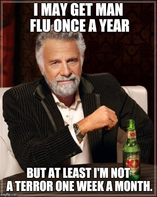 We got to deal with it every single month. | I MAY GET MAN FLU ONCE A YEAR BUT AT LEAST I'M NOT A TERROR ONE WEEK A MONTH. | image tagged in memes,the most interesting man in the world,menstruation,flu | made w/ Imgflip meme maker