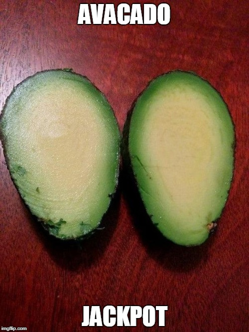 DING DING DING!! WE HAVE A WINNER! | AVACADO JACKPOT | image tagged in avacado | made w/ Imgflip meme maker