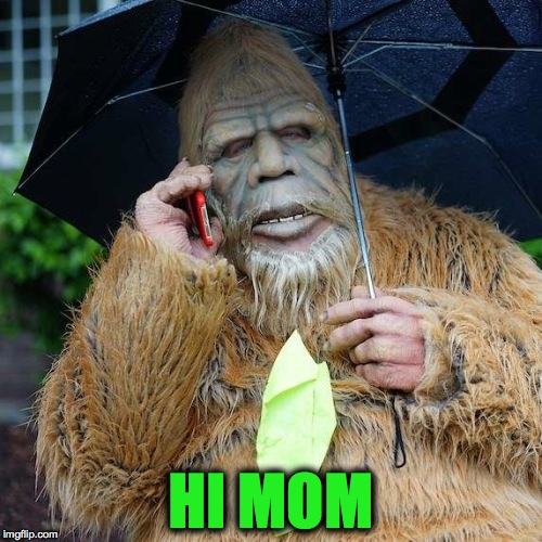 Homesick Sasquatch | HI MOM | image tagged in broke | made w/ Imgflip meme maker