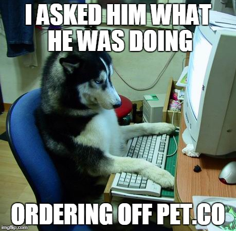 I Have No Idea What I Am Doing Meme | I ASKED HIM WHAT HE WAS DOING ORDERING OFF PET.CO | image tagged in memes,i have no idea what i am doing | made w/ Imgflip meme maker