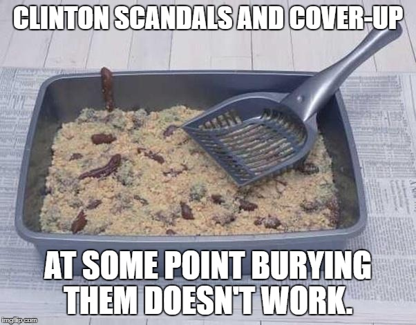 What do Clinton Scandals and cat boxes have in common? | CLINTON SCANDALS AND COVER-UP AT SOME POINT BURYING THEM DOESN'T WORK. | image tagged in hillary clinton,donald trump,puppies and kittens,beer,football | made w/ Imgflip meme maker