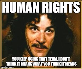 princess bride | HUMAN RIGHTS YOU KEEP USING THAT TERM, I DON'T THINK IT MEANS WHAT YOU THINK IT MEANS | image tagged in princess bride | made w/ Imgflip meme maker