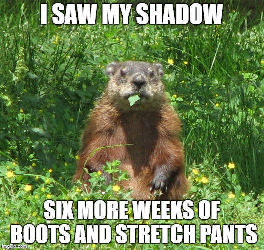Ground Hog Eating | I SAW MY SHADOW SIX MORE WEEKS OF BOOTS AND STRETCH PANTS | image tagged in ground hog eating | made w/ Imgflip meme maker