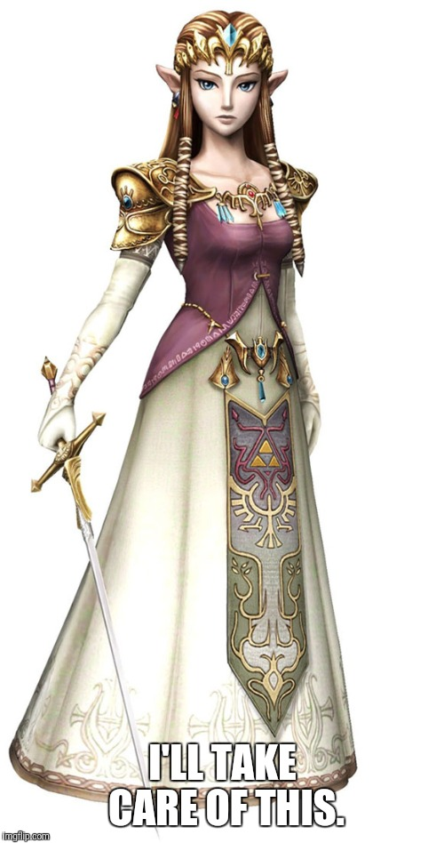 Princess Zelda | I'LL TAKE CARE OF THIS. | image tagged in princess zelda | made w/ Imgflip meme maker