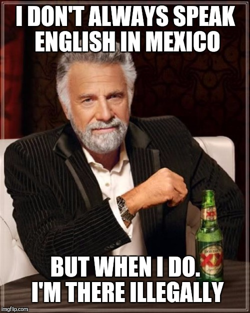 The Most Interesting Man In The World Meme | I DON'T ALWAYS SPEAK ENGLISH IN MEXICO BUT WHEN I DO. I'M THERE ILLEGALLY | image tagged in memes,the most interesting man in the world | made w/ Imgflip meme maker