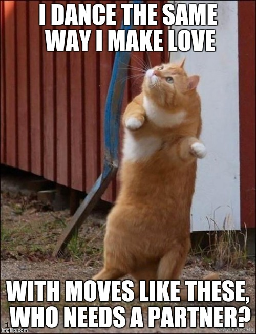 """And if I had the chance, I'd ask the world to dance"" 