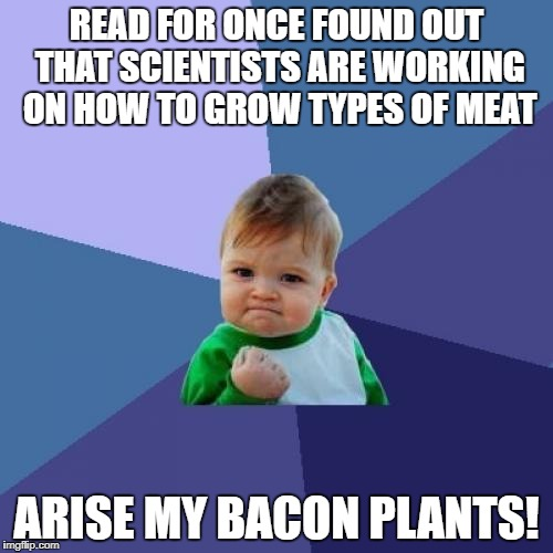Arise for the bacon plant! | READ FOR ONCE FOUND OUT THAT SCIENTISTS ARE WORKING ON HOW TO GROW TYPES OF MEAT ARISE MY BACON PLANTS! | image tagged in memes,success kid,bacon | made w/ Imgflip meme maker