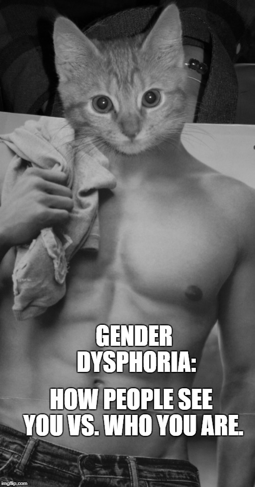 GENDER DYSPHORIA | GENDER DYSPHORIA: HOW PEOPLE SEE YOU VS. WHO YOU ARE. | image tagged in gender dysphoria,gender identity,abercrombie  fitch,transgender,funny,kitten | made w/ Imgflip meme maker