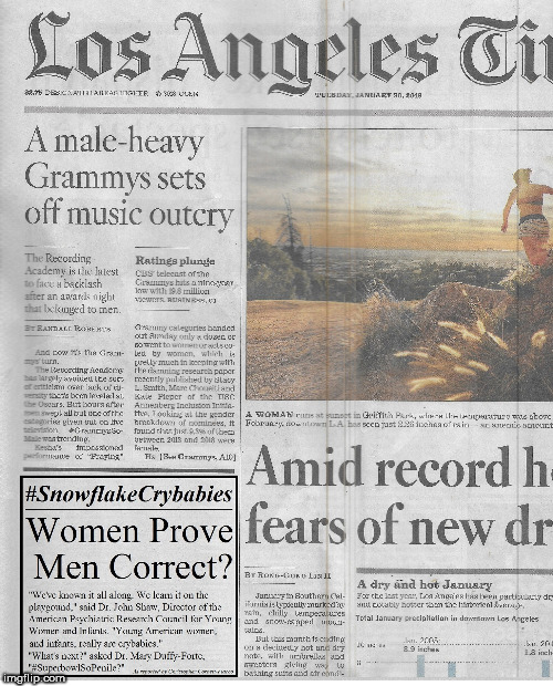 #SnowflakeCrybabies Grammys | image tagged in snowflake,grammys | made w/ Imgflip meme maker