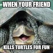 WHEN YOUR FRIEND KILLS TURTLES FOR FUN | image tagged in derpy turtle | made w/ Imgflip meme maker