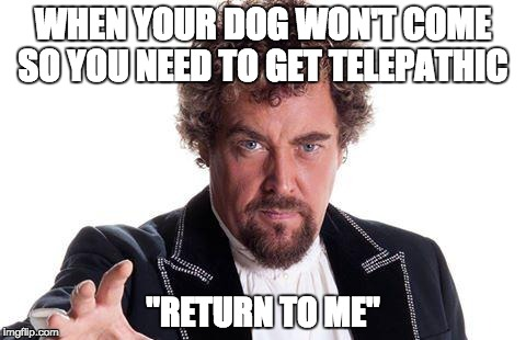 "Dog Telepathy | WHEN YOUR DOG WON'T COME SO YOU NEED TO GET TELEPATHIC ""RETURN TO ME"" 