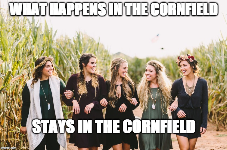 What Happens In The Cornfield Stays In The Cornfield | WHAT HAPPENS IN THE CORNFIELD STAYS IN THE CORNFIELD | image tagged in what happens in the cornfield,cornfield fun | made w/ Imgflip meme maker
