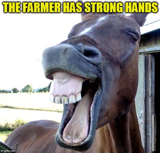 THE FARMER HAS STRONG HANDS | made w/ Imgflip meme maker