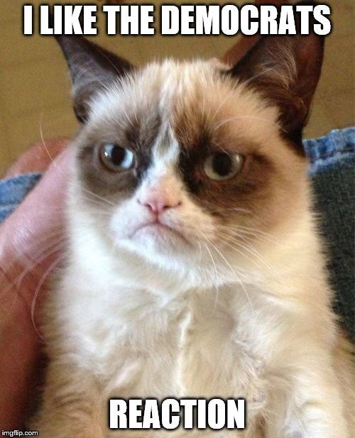 Grumpy Cat Meme | I LIKE THE DEMOCRATS REACTION | image tagged in memes,grumpy cat | made w/ Imgflip meme maker