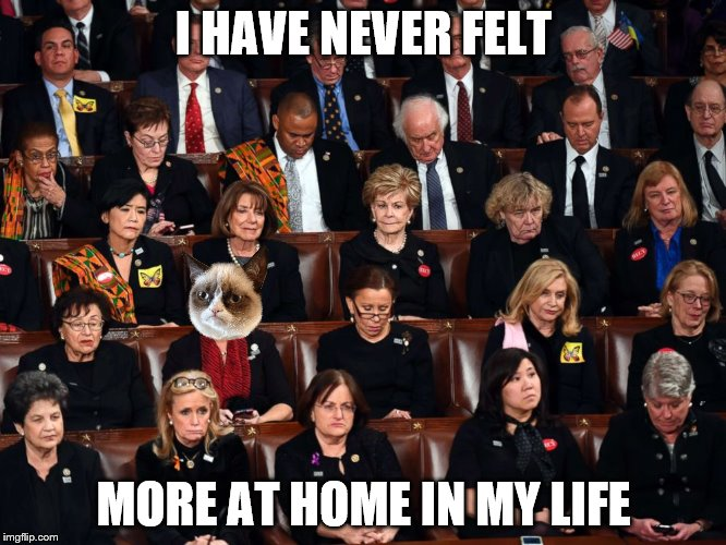 The SOTU attendee the mainstream media has been trying to hide from you.  | I HAVE NEVER FELT MORE AT HOME IN MY LIFE | image tagged in memes,grumpy cat,sotu | made w/ Imgflip meme maker
