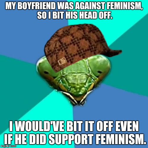 Crazy Girlfriend Praying Mantis Meme | MY BOYFRIEND WAS AGAINST FEMINISM, SO I BIT HIS HEAD OFF. I WOULD'VE BIT IT OFF EVEN IF HE DID SUPPORT FEMINISM. | image tagged in memes,crazy girlfriend praying mantis,scumbag | made w/ Imgflip meme maker
