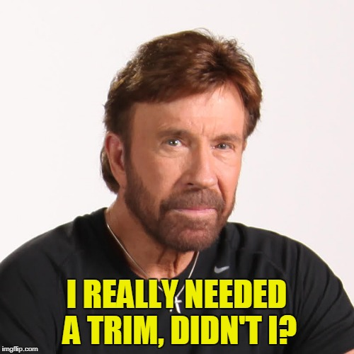 I REALLY NEEDED A TRIM, DIDN'T I? | made w/ Imgflip meme maker
